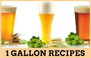 Mr. Beer 1 Gallon Beer Recipes