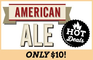 Mr. Beer American Ale on Sale