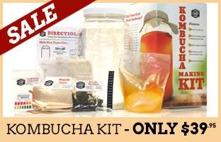 Mr. Beer Kombucha Kit on Sale